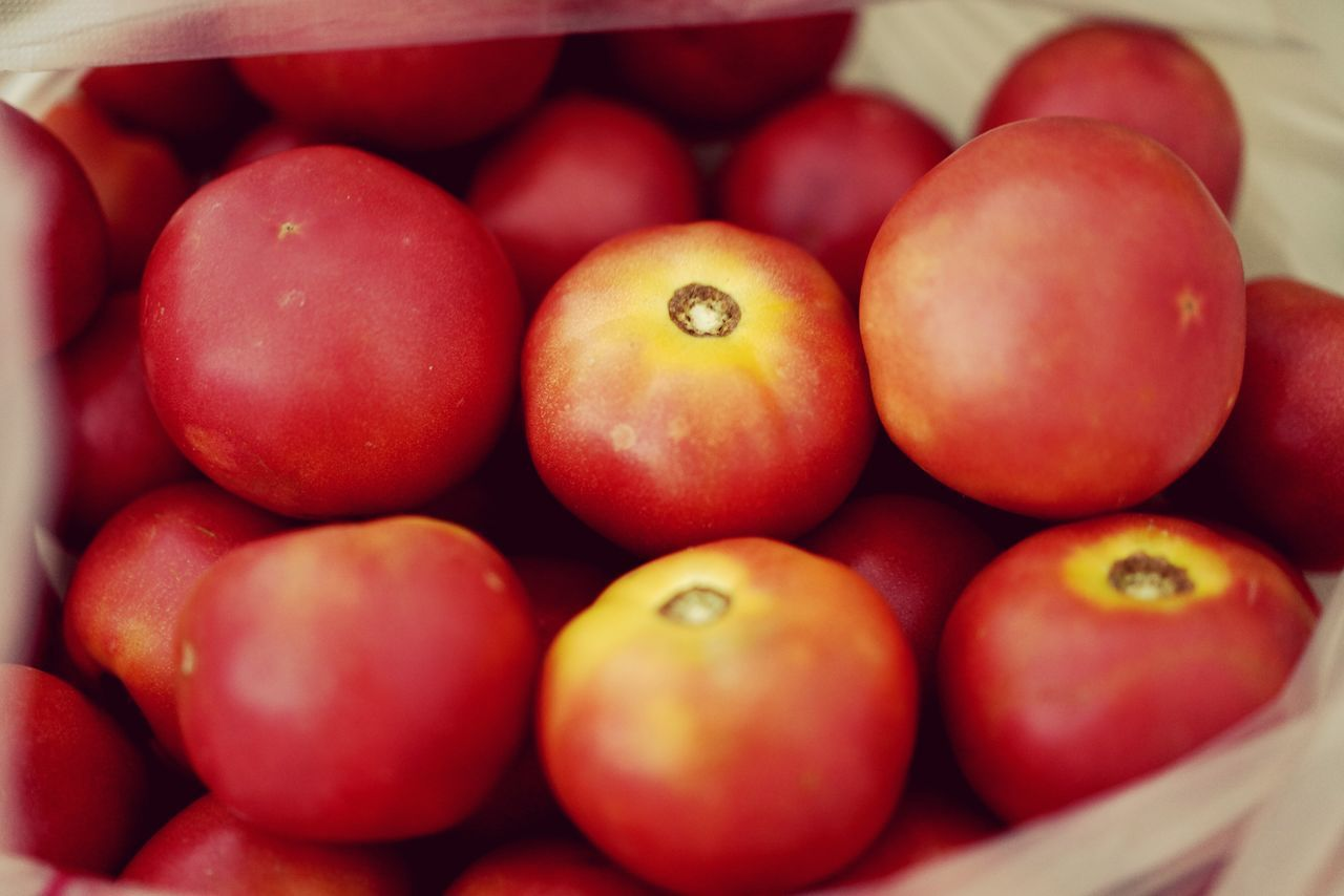 healthy eating, food, food and drink, fruit, wellbeing, freshness, still life, red, large group of objects, close-up, tomato, no people, full frame, indoors, abundance, vegetable, backgrounds, day, apple - fruit, ripe