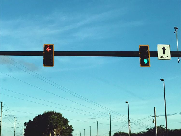 Cable Low Angle View Sky Day Blue No People Outdoors Guidance Stoplight Communication Tree Signal