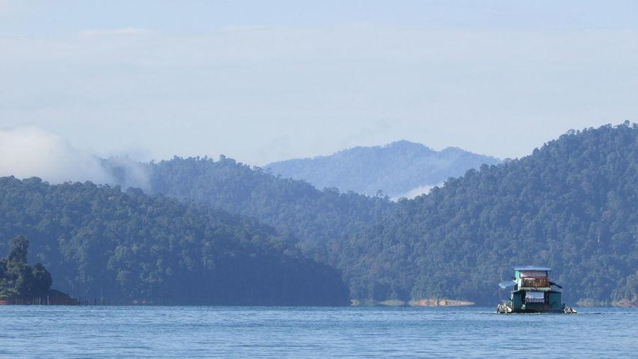 Boat Tree Water