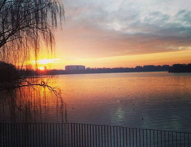 Berlin Tegel Laketegel Teglersee Sun Sonnenaufgang Gutenmorgen Morning Grammasters3
