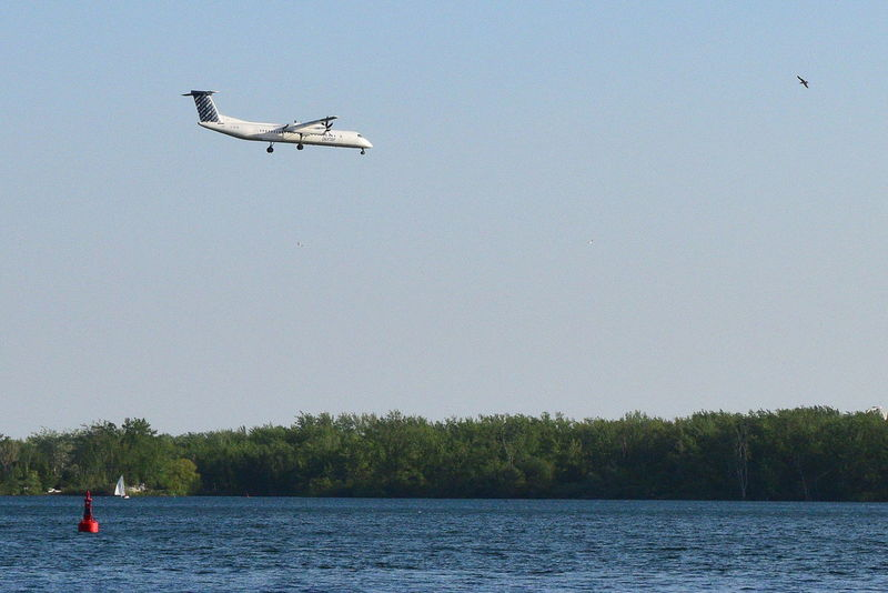 Air Vehicle Airplane Billy Bishop Airport Clear Sky Decending Final Approach Flying Lake Lake Ontario Leisure Activity Mode Of Transport Nature Non-urban Scene River Scenics Toronto Islands Tourist Tranquil Scene Tranquility Transportation Travel Tree Vacations Water Waterfront