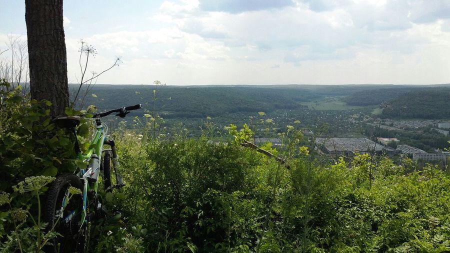 MTB Trail Nature Trail Ride