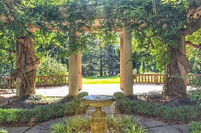 Architecture Man-made Structure Fountain Vine Wrapped Pillar Lush Foliage Trees