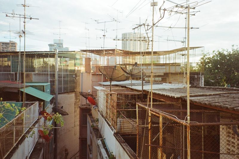 mornings in bangkok 35mm Film Analogue Photography Antennas Architecture Bangkok Bangkok Thailand. Building Exterior Built Structure City Cityscape Day Film Photography Filmisnotdead Morning Light New Topographics No People Outdoors Rooftop Sky Tv Antennas Urban Landscape