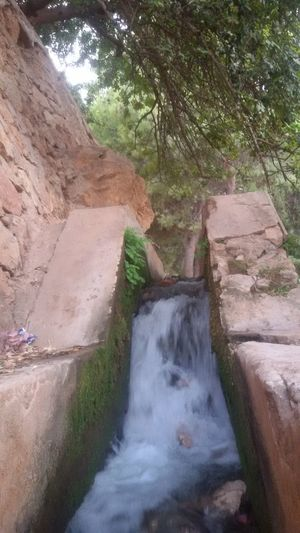 Water Outdoors Nature Day Tree No People Beauty In Nature Waterfall Landscape Power In Nature Just Taking Pictures Eyeemphotography Been There, Done That Week On Eyeem Beni Mellal Ain Asserdoune Eyeemmorocco Travel Destinations