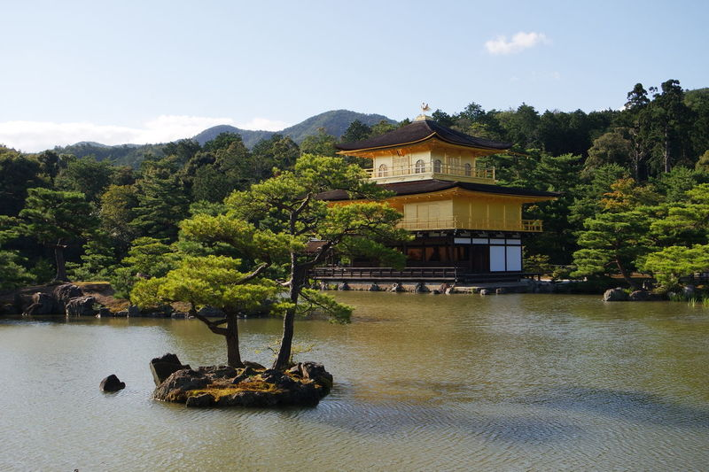 Picture Perfect 📸Golden Temple Kinkaku-ji Kinkaku-ji Golden Pavilion Kinkakuji Kinkakuji Temple Kyoto Kyoto,japan Mountains Nature Serene Trees Water Landscapes With WhiteWall The Architect - 2016 EyeEm Awards The Great Outdoors With Adobe The Great Outdoors - 2016 EyeEm Awards The Essence Of Summer The Following 43 Golden Moments Feel The Journey Original Experiences Ultimate Japan Fine Art Photography Neighborhood Map