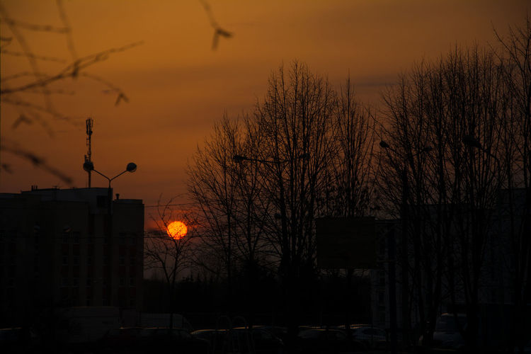 Sunset Sky Tree Silhouette Bare Tree Architecture Building Exterior Orange Color Built Structure Nature No People Street Plant Outdoors Sun Street Light Beauty In Nature City Building Branch