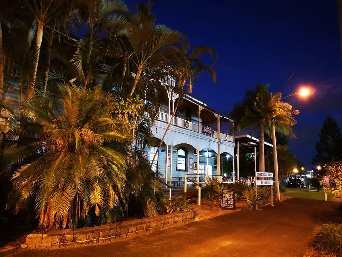 Old hotel. Tree Illuminated Sky Palm Tree