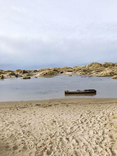 Sand Dune Pond