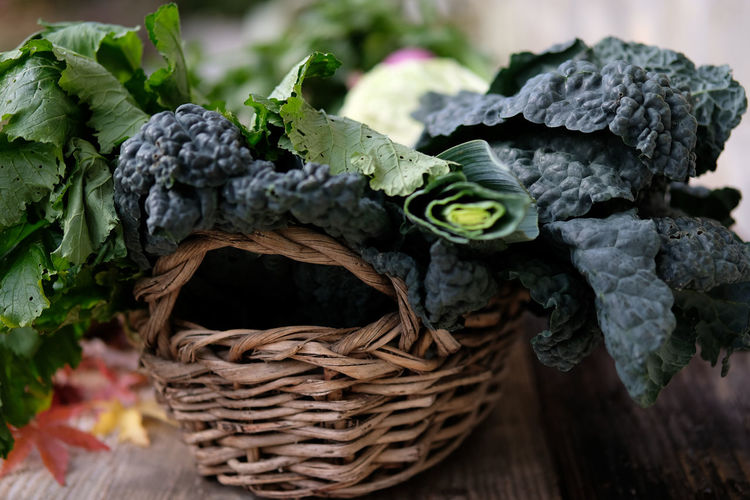Leek Winter Basket Broccoli Broccoli Raab Broccoli Rabe Close-up Day Fragility Freshness Kale Nature No People Outdoors Rapini Vegetable