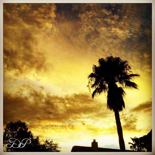 Summertime Arizona Sunsets Sky_collection EyeEm Best Shots Beautifulskylines