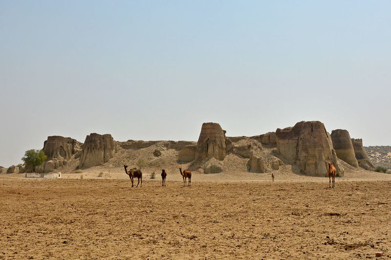 People on rock formations in desert against clear sky