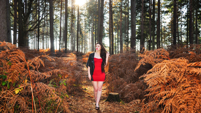 Beautiful young lady in a red dress in the sunlit forest Girl Millenial Young Lady Red Dress Red Red Color Red Lipstick Forest Trees Beauty Beautiful Woman Beautiful Long Hair Bright Sun Bright Sunshine Bright Sunlight Ferns Bracken Black Leather Jacket Full Body Stunner Beautiful Young Lady Beautiful Young Woman Autumn Autumn colors autumn mood Tree One Person Young Adult Full Length Young Women Beauty In Nature WoodLand