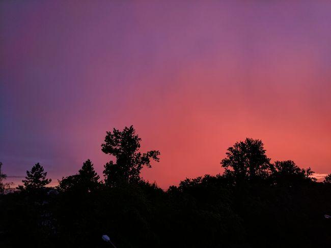 Beauty In Nature Nature Orange Color Purple Romantic Sky Sky Sunset Tree