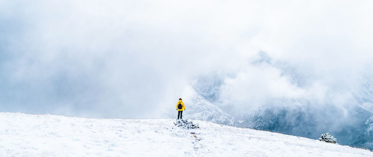 Person skiing on snowcapped mountains during winter