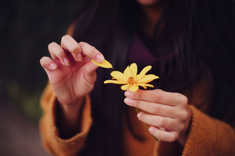 Close-up of woman hand holding flowering plant