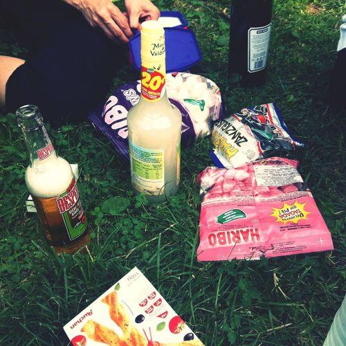 Enjoying Life At the park