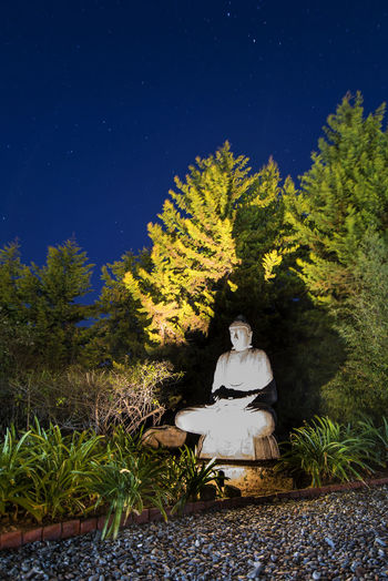 Statue by trees against sky at night