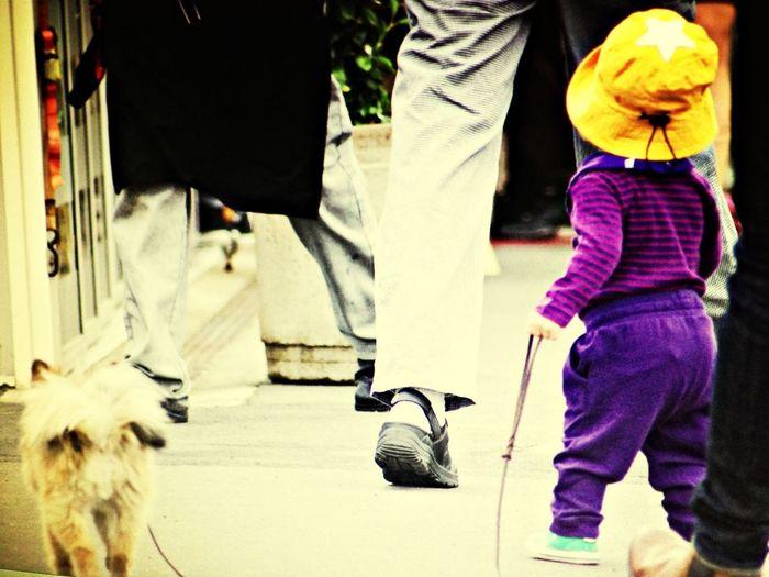 Dog #child #leg