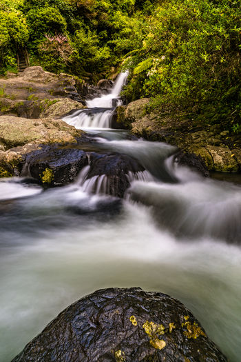 Long exposure waterfall of Kaiate Falls, located near Tauranga, New Zealand Beauty In Nature Blurred Motion Day Flowing Flowing Water Forest Land Long Exposure Motion Nature No People Outdoors Plant Power In Nature Rainforest Rock Rock - Object Scenics - Nature Solid Stream - Flowing Water Tree Water Waterfall Waterfall_collection Waterfalls
