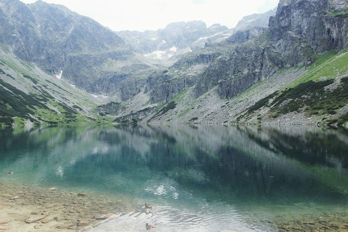 Czarny Staw Gąsienicowy Tatra Mountains Mountain Lake Water Water Reflections Mountains Nature National Park Poland VSCO Vscocam Duck The Great Outdoors - 2017 EyeEm Awards