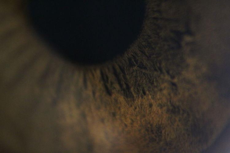 Eye Macro Macro