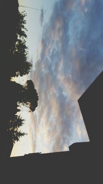 Sky Tree Cloud - Sky No People Nature Hello World
