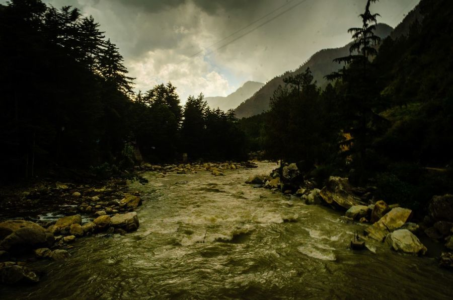 The beautiful Parvati at Kasol, Himachal Pradesh River Enchanting India Parvativalley Valley Himachal Himalayas Himachalpradesh Forest Trail India Tree No People Nature Landscape Outdoors Pinaceae Cloud - Sky Forest Scenics Beauty In Nature Sky