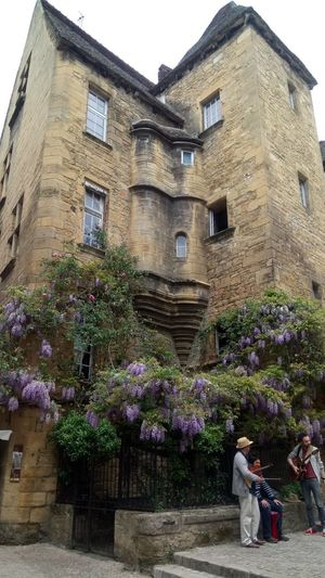 Sarlat Low Angle View Flower City VILLE DE FRANCE Architecture History Ancient Holiday Vacances History Architecture Paysage De France Photography Vue Fleurs Flowers Visite EyeEmNewHere Musicians Rue Resist Art Is Everywhere Smartphonephotography Sony Xperia XA The Street Photographer - 2017 EyeEm Awards The Great Outdoors - 2017 EyeEm Awards The Architect - 2017 EyeEm Awards