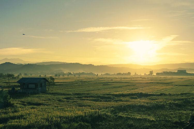 Beauty Exploring EyeEm Nature Lover Freedom Golden Hour Ilocos Norte, Philippines  Itsmorefuninthephilippines Laoag City Leading Natural Beauty Sunrise Sunrise_Collection Sunrise_sunsets_aroundworld Sunriseporn Voyage