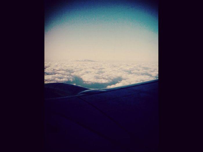 집에 가는 비행기안에서