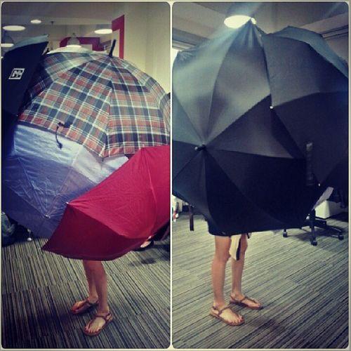 Crazy umbrella lady Hahahaha Redfuse antics
