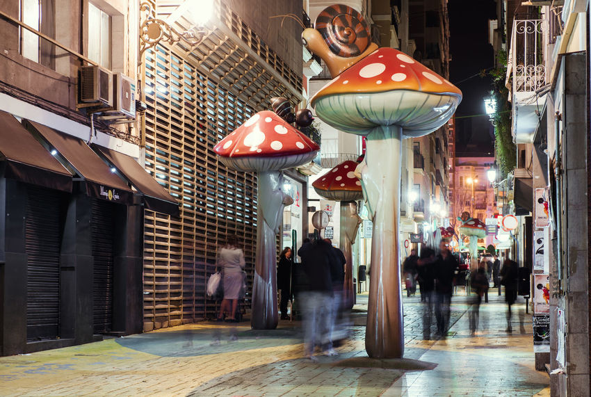 Alicante, Spain-February 24, 2016: People walking on the street filled with giant mushrooms, ants and snails. Alicante, Costa Blanca. Valencian Community, Spain Alicante, Spain Alley Architecture Costa Blanca Crowd Of People Editorial  Europe Illuminated Illumination Landmark Motion Mushrooms Narrow Street Night Old Town Outdoors Pathway Pedestrians People Sculpture Sidewalk SPAIN Street Lights Travel Destinations Walkway