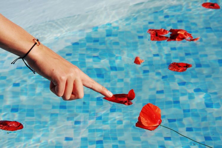 Cropped Image Of Woman Touching Flowers In Swimming Pool