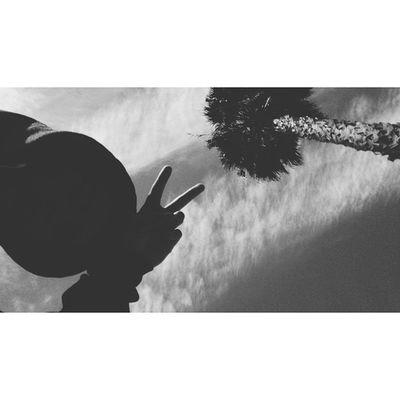 SS. Selfiesunday Oldpicture Palmtree Peace MonochromeVscoCamwasMobbingThatDaySkyPeaceYo