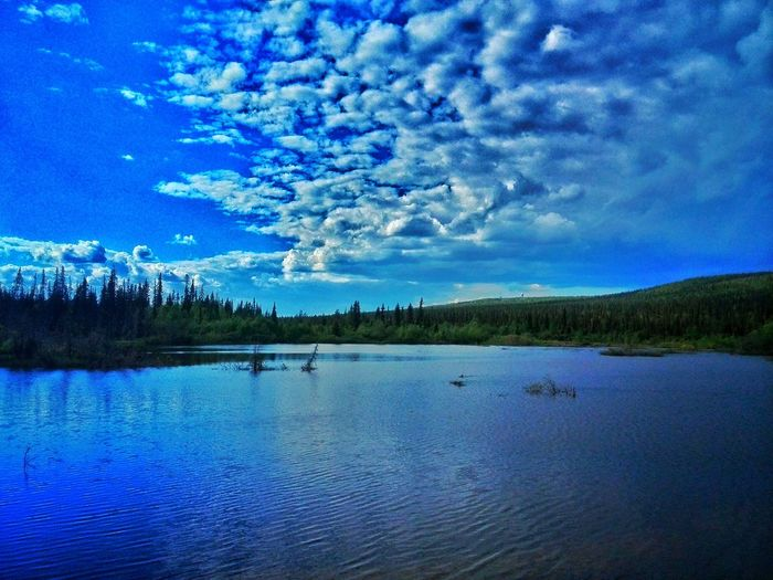 Water Backgrounds No People Cloud - Sky Lake Nature Blue Beauty In Nature Sky Tree Outdoors Scenics Tranquil Scene
