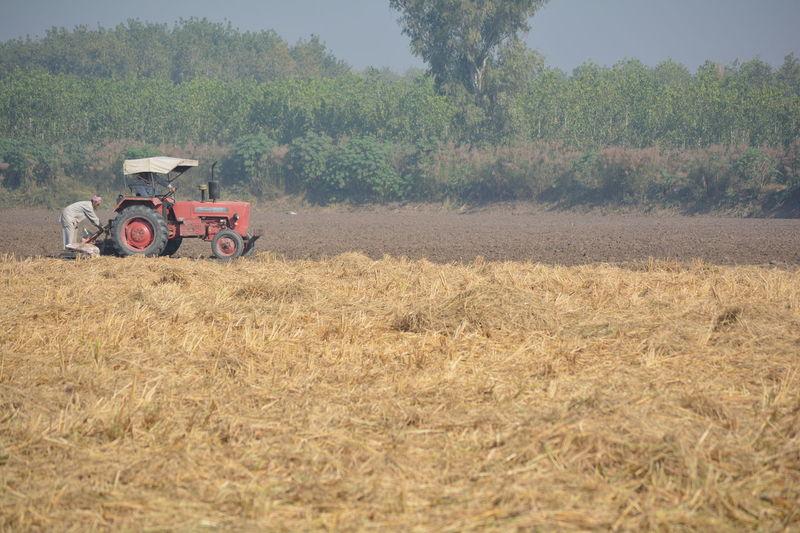 Farming, people, work, field,