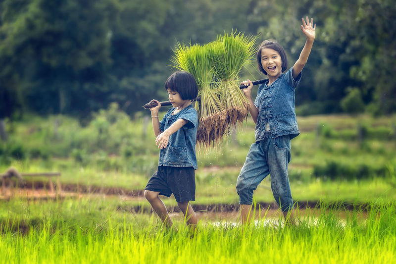 Full Length Of Girls Carrying Rice Crops While Walking On Field
