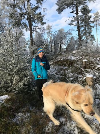 Pets Dog Cold Temperature Winter Tree Snow Forest Outdoors Nature Day People Spydeberg Norway