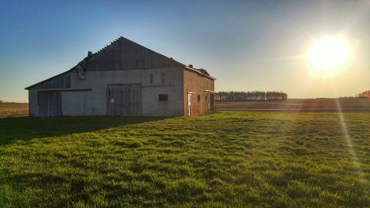 grass, architecture, built structure, field, sunlight, lens flare, no people, building exterior, sun, sunset, barn, sky, tranquility, outdoors, clear sky, nature, landscape, day, scenics, beauty in nature