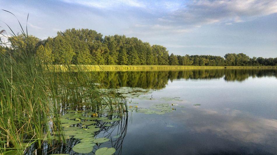 Lake Magdalenowo Suwalszczyzna WigryNationalPark Holiday In Poland Poland 💗