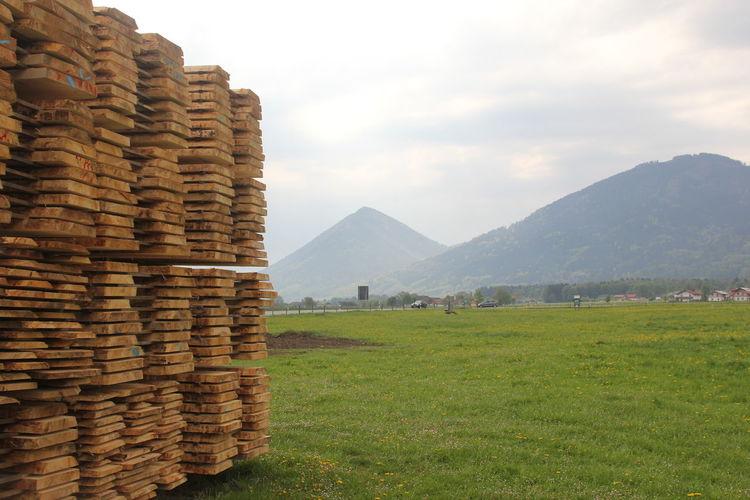 Holzbretter