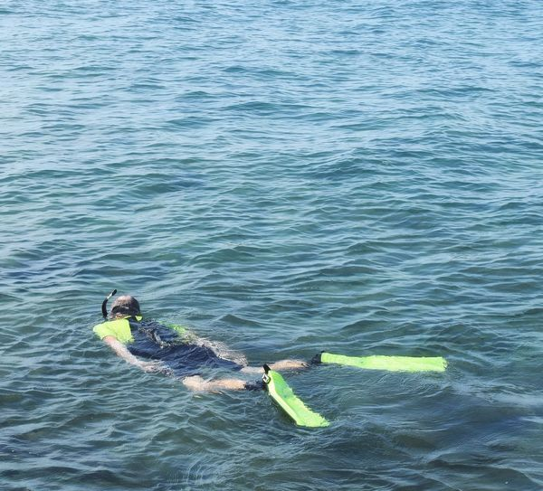 Man snorkeling in the sea Water High Angle View Outdoors Nature Sea One Person Man Vocation Summer Sportsman Snorkeling Swimming Beauty In Nature UnderSea Water Sea Sport Nature Relaxing Healthy Lifestyle Wave