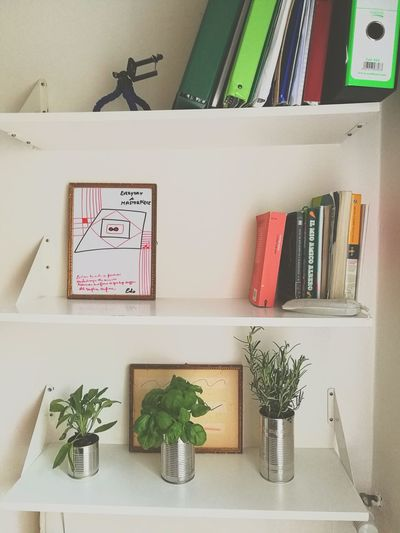 Canned Food Cannedplant Book Botany Aromatic Aromatic Herbs Aromatic Plants Can Bookshelf Neat Paper Clip Desk Organizer Office Shelf Text Variation Colored Pencil Art And Craft Equipment Office Supply Arrangement Pencil Shelves Clip