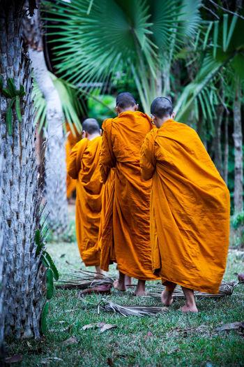 monks walking Asian Culture Buddhist Thai Way Of Life Buddism Monks Walking Walking Way Forward