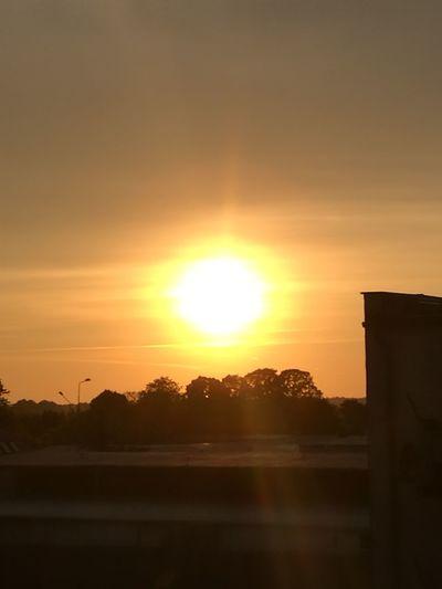 Sunset Tree Astronomy Sunlight Silhouette Sun Dramatic Sky Sky Cloud - Sky Landscape