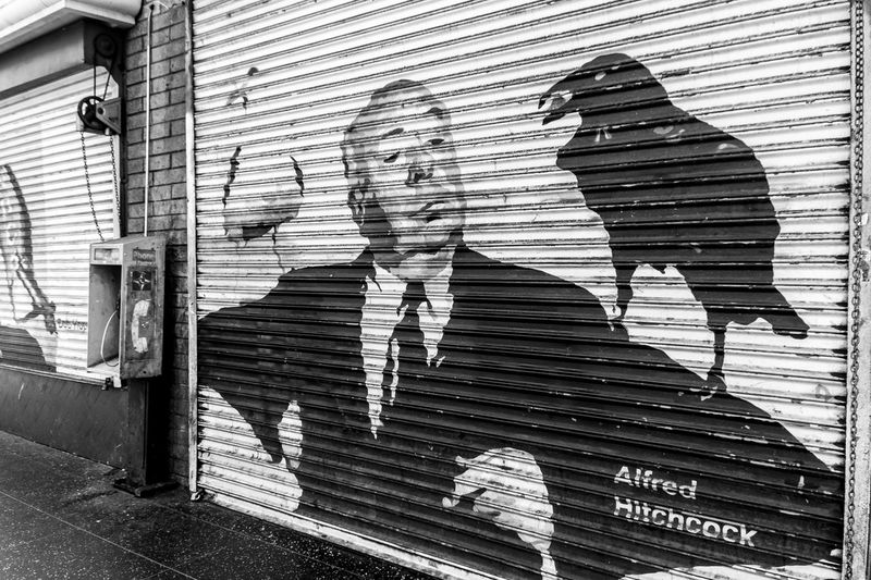 Alfred Hitchcock, The Birds street art. Alfred Hitchcock America Black And White California California Love City City Life Graffiti Hollywood La Los Angeles, California Los Ángeles Losangeles Street Art Street Art/Graffiti Street Life Street Photography Streetphotography The Birds Travel Travel Photo Travel Photographer Travel Photography Travel Photos