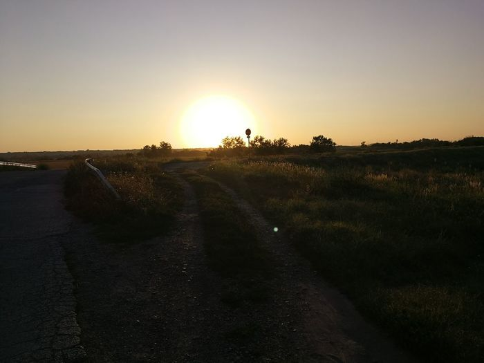 Grass Sunset Yellow Light Hungary Outdoors Dirtroad Sky Summer