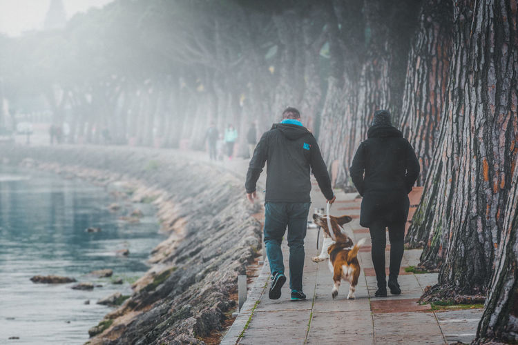 Rear view of man and woman with dog walking on footpath by lake garda