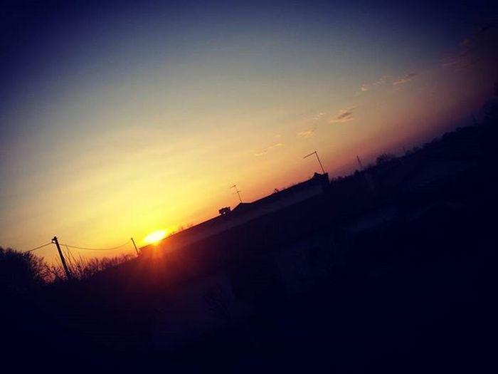 Finalmenteilsole Sole Tramonto Sunsettoday Tramontooggi Sunset Colors Colori Icoloridelcielo Sky Blusky Tree Alberi Nuvole Clouds Nuages Effects Effetti Today Effettifotografici Oggi Unabellagiornata
